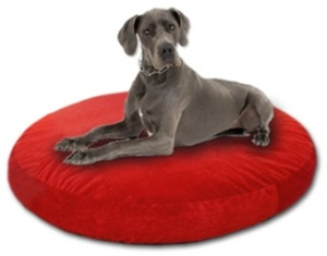The Fompancake is the most luxurious dog bed ever